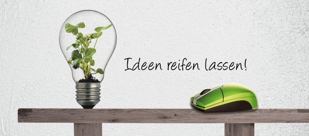 Ideen reifen lassen